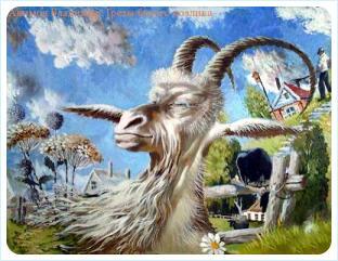 Коза-демократ, мечты на фоне разрухи